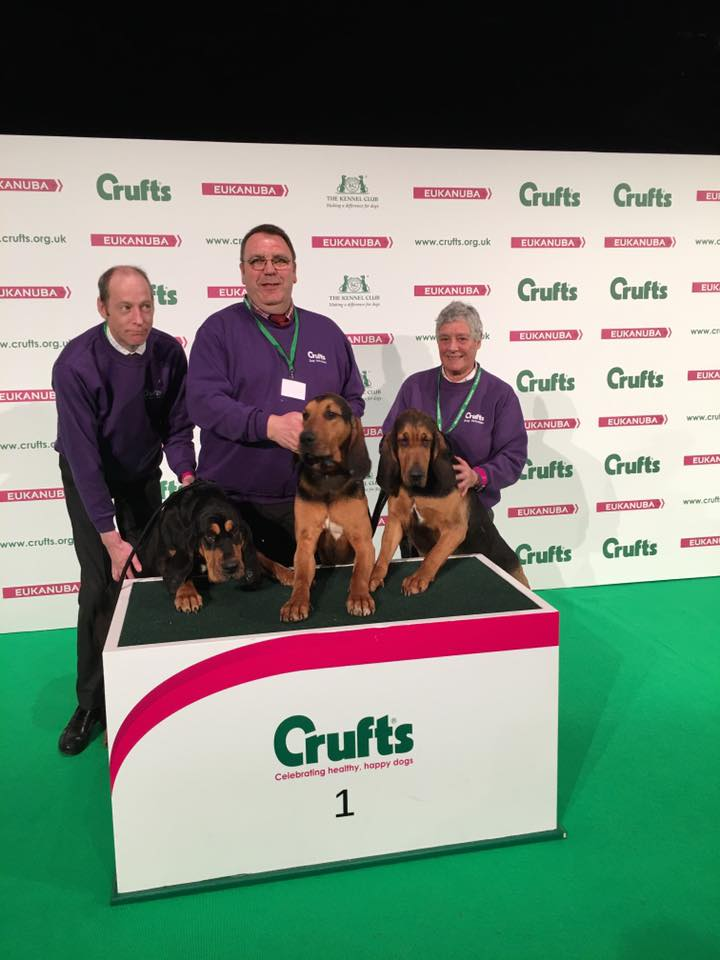 4Shires Crufts